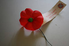 Happy Armistice Day, Remembrance Day, Veterans Day! | Words to Bumble